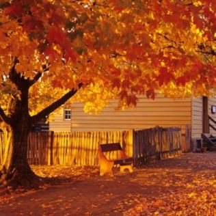 autumn southern living