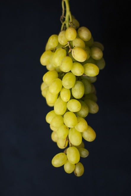 green grapes FREE IMAGE via boss fight