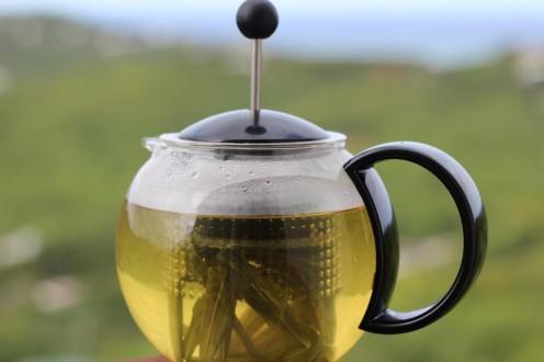 bush tea via crucian contesssa