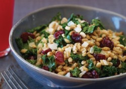 warm farro pilaf w/dried cranberries via vegetarian times