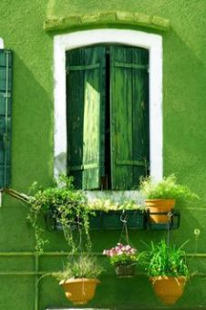 pinterest_green shutter