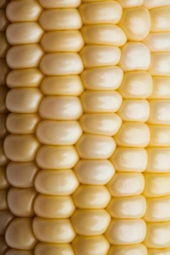 close up of corn on the cob via pinterest