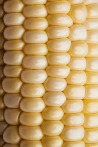 close up of corn on the cob via pinterest