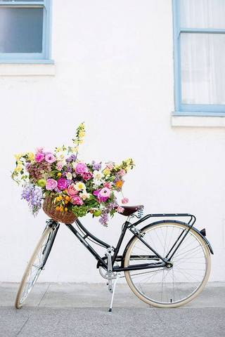 flowers on a bike via domino