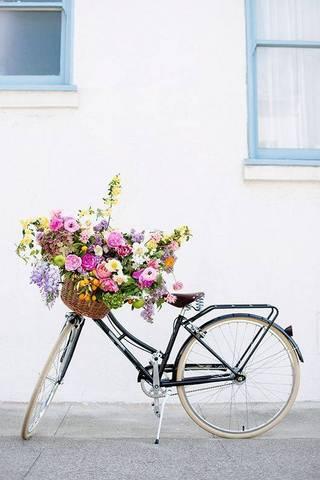 flowers on a bike via domino