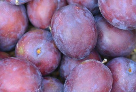 plums - FREE IMAGE via pixabay