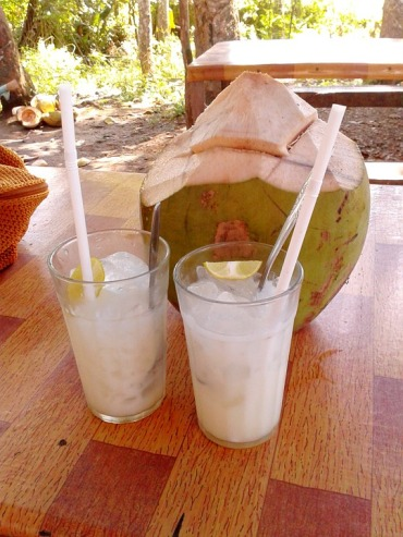 fresh coconut water - FREE IMAGE via Pixabay