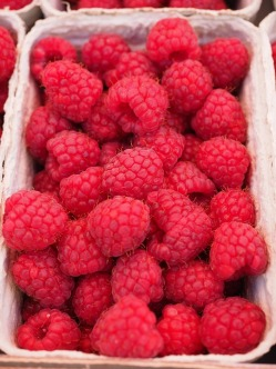 fresh raspberries FREE IMAGE via pixabay
