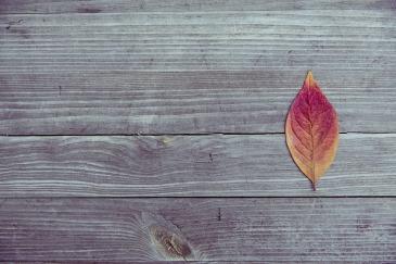 autumn-leaf-table-via-pixabay-free-image