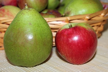 fresh apples and pears FREE IMAGE via pixabay